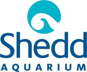 Shedd-Aquarium-300x248.jpg