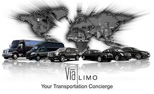 ViaLimo_Logo-1024x628.png